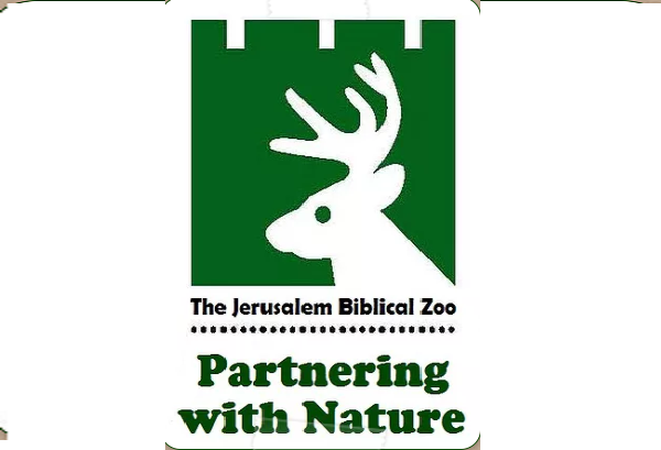 Zoo Assistant - The Biblical Zoo